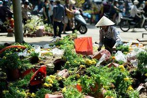 Xin đừng đợi chiều 30 Tết mới mua hoa cây cảnh!
