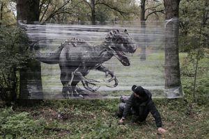 Đẹp mê hồn với các bức tranh được sáng tạo trong rừng