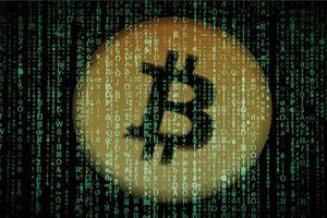 Ai là người sở hữu tài sản lớn nhất từ tiền ảo?