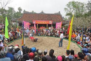 Tưng bừng hội vật truyền thống làng Thủ Lễ tại Thừa Thiên-Huế
