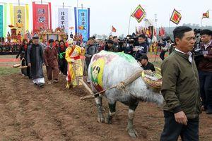 Bô lão làng Đọi mặc Long bào, đeo mặt nạ đóng giả vua đi cày
