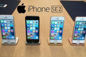 Những nâng cấp trên iPhone SE 2 khiến người dùng thất vọng