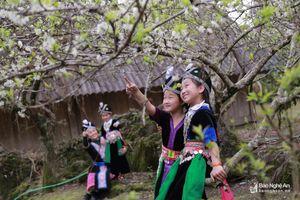 Cuốn hút sắc Xuân rẻo cao xứ Nghệ