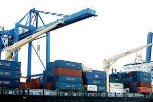 Thanh Hóa: Tìm cách tháo gỡ khó khăn tại dự án Cảng Container Long Sơn