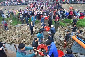 Hơn 5 tấn cá được thả trong Lễ phóng sinh lớn nhất Hà Nội
