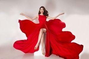 Hoa hậu Phạm Hương rực rỡ khởi đầu năm mới với nhiều tin vui