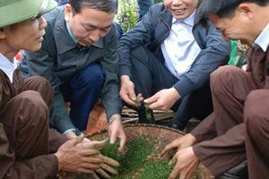 Bộ trưởng: Chè Thái Nguyên không chỉ để uống, mà còn để làm du lịch