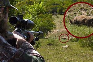 Thanh niên bị bắn chết vì nhầm thú rừng