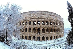 'Quái vật phương Đông' mang tuyết hiếm đến Rome