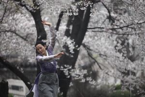 Biên đạo Hàn Quốc đưa Kiều lên sàn múa