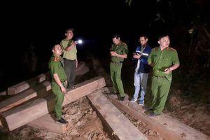 Đắk Lắk bắt hơn 30 khối gỗ trái phép