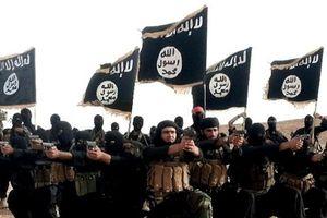 Mỹ cảnh báo nguy cơ từ các 'chân rết' của IS trên thế giới