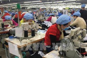 Xung lực mới nâng tầm quan hệ thương mại Việt Nam - Ấn Độ