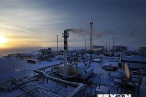 Nga: Tập đoàn Gazprom từ chối nối lại cung cấp khí đốt cho Ukraine