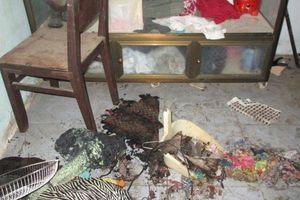 Khởi tố, bắt giam con rể phóng hỏa đốt nhà vợ làm 3 người bị bỏng