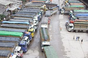 Sôi động xuất khẩu nông sản tại cửa khẩu Tân Thanh những ngày đầu xuân