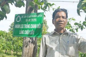 Gia Lai: Người dân thoát nghèo nhờ trồng chanh dây