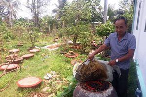 Hậu Giang: Bảo vệ môi trường ở các HTX trồng trọt, sản xuất 