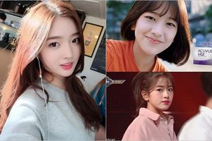 Netizen 'điểm danh' thí sinh Produce 48: Thì ra toàn gương mặt thân quen