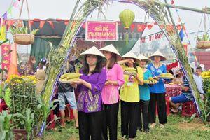 'Đại tiệc' từ 10.000 trái bắp ở Hội An