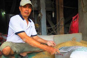 Một túi vàng bỏ quên trong bao lúa, nhiều người nhận là chủ nhân