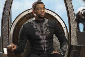 'Black Panther' trụ vững ngôi quán quân phòng vé Bắc Mỹ sau 3 tuần công chiếu