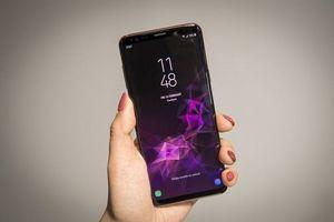 Galaxy S9/S9+ có thể bán được 40 triệu chiếc trong năm 2018, cũng chỉ tương đương S8