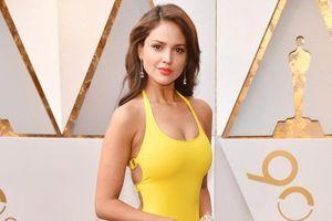 Những bộ đầm sexy nhất thảm đỏ Oscar 2018