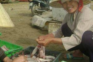 Thực hư chuyện ăn cá khoai dính chất bảo quản cực độc