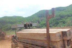Đắk Lắk: Bắt 5 đối tượng trong vụ hàng đoàn xe chở gỗ lậu