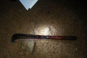 Nghi án cha sát hại dã man con gái và truy sát vợ