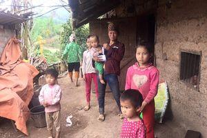 Hai bố con bị sát hại dã man trong rừng: Gia đình phải rời nhà