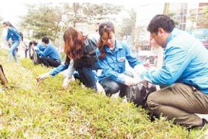 Ra quân năm đội hình thanh niên tình nguyện