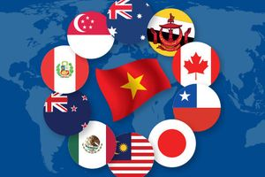Các tổ chức quốc tế nhận định gì về tác động của CPTPP tới Việt Nam?