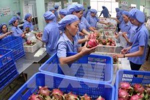 Làm gì để nâng cao giá trị nông sản Việt Nam