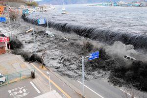 Sóng thần ở Nhật: Vì sao 1 trường chết đuối, 1 trường tất cả sống sót?