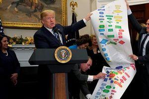 Tổng thống Donald Trump xem xét chọn lựa cựu giám đốc Microsoft cho vai trò cố vấn kinh tế