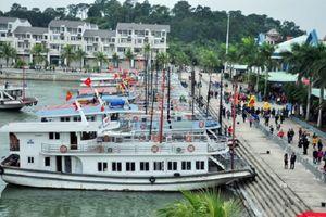 Quảng Ninh: Chìm tàu tại cảng quốc tế Tuần Châu, ba thuyền viên may mắn thoát nạn