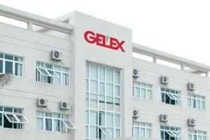 Gelex phát hành 53,3 triệu cổ phiếu tăng vốn và trả cổ tức bằng tiền 10%