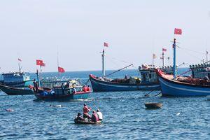 Nghiệp đoàn giúp ngư dân yên tâm bám biển