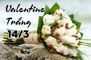 10 lời chúc ngọt ngào, thú vị ngày Valentine trắng 14/3