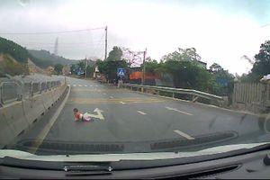 Clip: Thót tim bé bò lổm ngổm trên đường cao tốc Quảng Ninh