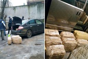 Vận động viên Nga dính líu đường dây buôn lậu ma túy quy mô lớn