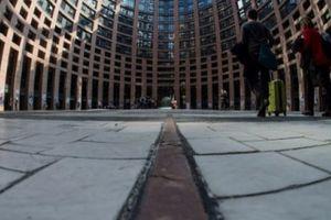 Nghị viện châu Âu bí mật đàm phán với Triều Tiên suốt 3 năm qua?