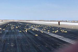 Hoa mắt nhìn 3 tấn vàng rơi lả tả từ máy bay