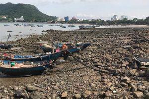 Tập đoàn Tuần Châu: 'Hóa kiếp' bãi bùn thành 'siêu dự án' đẳng cấp quốc tế