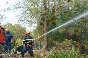 Gần 100 người thực tập chữa cháy Vườn chim Bạc Liêu