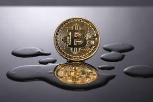 Sự hâm mộ cuồng nhiệt Bitcoin phai nhạt