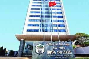 Bù trừ nợ, Hoàng Anh Gia Lai thâu tóm một doanh nghiệp gần 2.500 tỷ