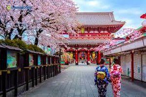 Cơ hội trải nghiệm du lịch mùa hoa anh đào